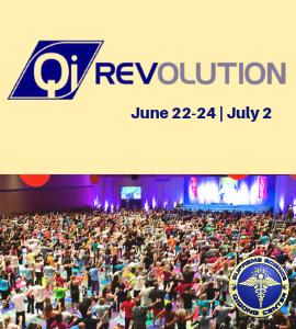 Qi Revolution 300x270.png